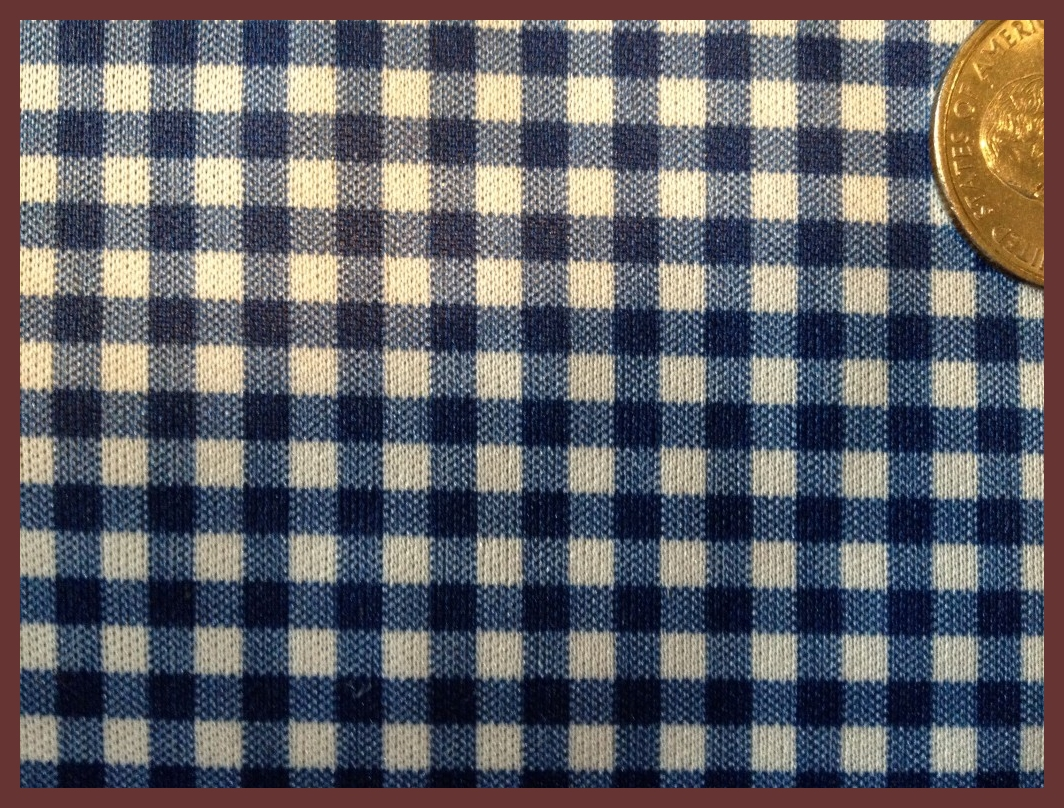 Gingham Blue -by the inch