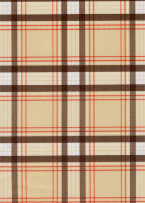 "Brown Plaid 20""X24"""