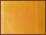Golden Microfleece